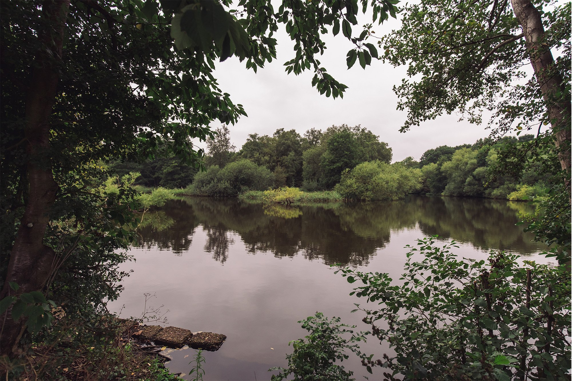 Testing the Sony A7R II – A lake on Hampstead Heath