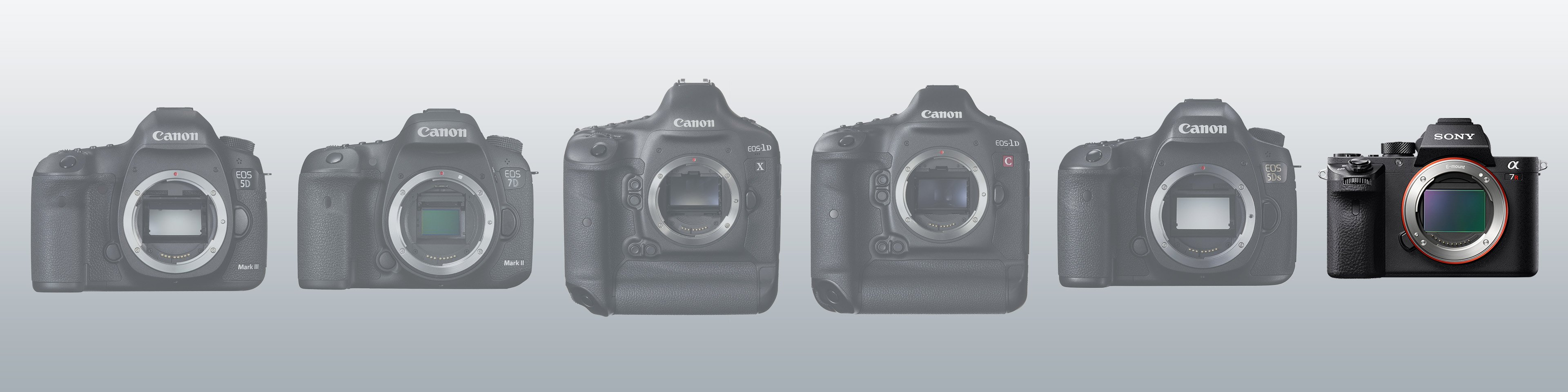Which camera should I buy? The Sony A7R II of course!