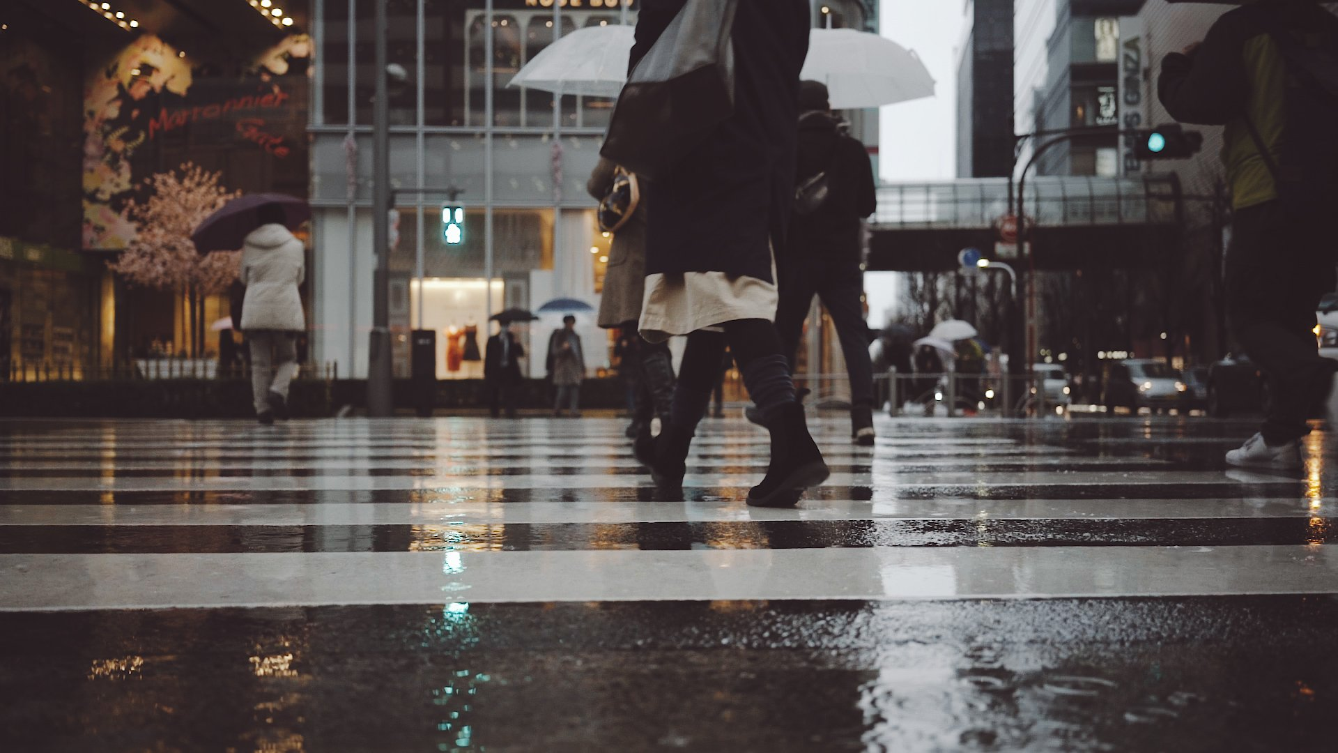 Tokyo Rain Cine Scenes Puddle
